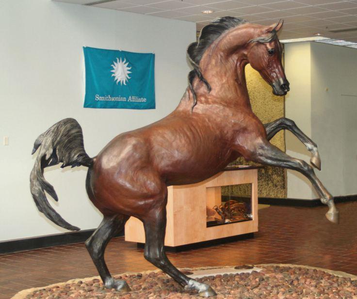 horses-Bask